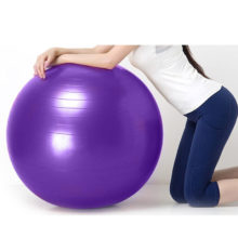 Yoga Ball GYM Fitness Iron Shake Balance Exercise Sport  Workout Relieve Pain Massage Balls Training Tool 55cm 65cm 75cm
